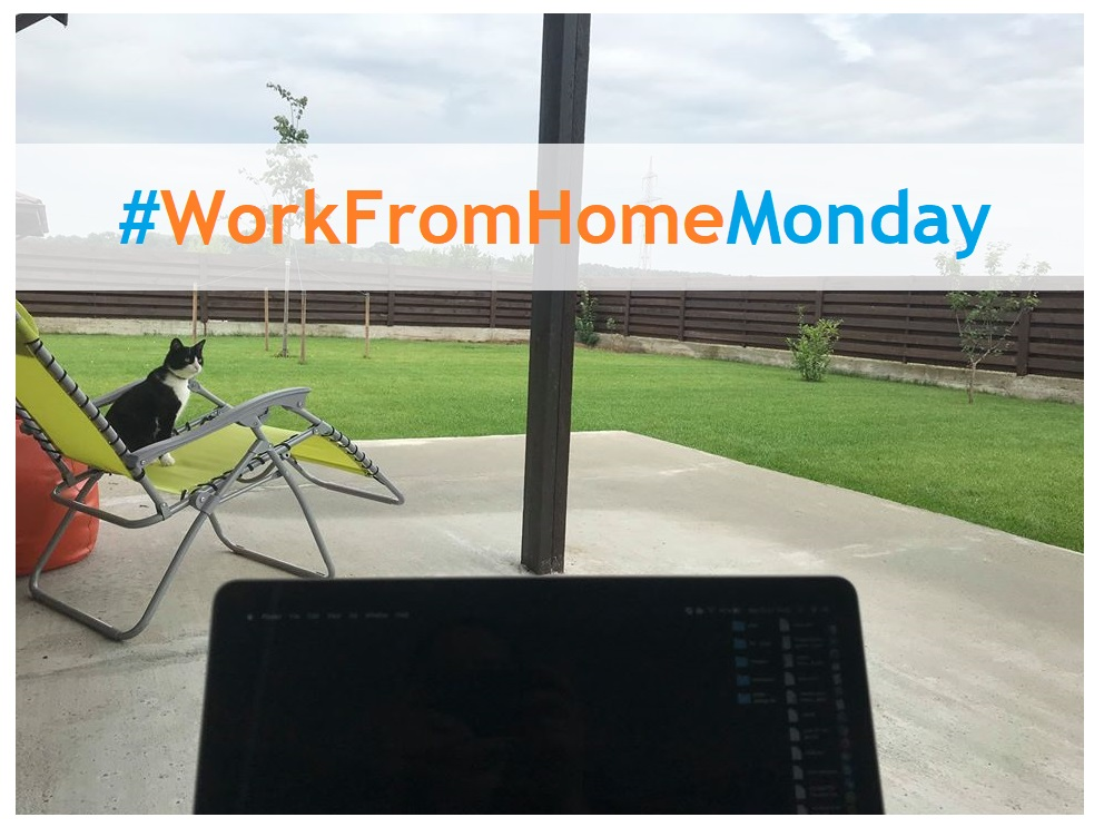 work from home monday